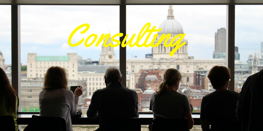 Business Consulting - www.doublescoop.com.au